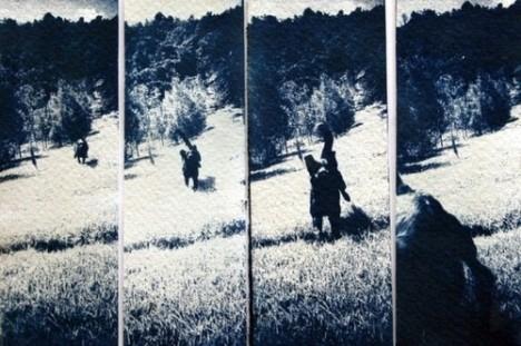 cyanotype (11)